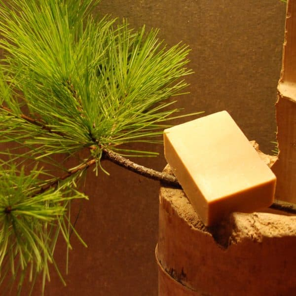 五葉松皂 Shortleaf Pine Soap